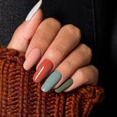 𝐀𝐮𝐭𝐞𝐧𝐭𝐢𝐜𝐚 - 𝐧𝐨𝐯𝐚́ 𝐤𝐨𝐥𝐞𝐤𝐜𝐞 𝐏𝐨𝐝𝐳𝐢𝐦 - 𝐙𝐢𝐦𝐚 𝟐𝟎/𝟐𝟏 Přijďte si kolekci vyzkoušet na nějaký z našich workshopů. 🤎  𝖦𝖱𝟤𝟨 - 𝖥𝖠𝖡𝖴𝖮𝖫𝖴𝖲 - šedozelená 𝖦𝖱𝟤𝟧 - 𝖲𝖳𝖸𝖫𝖨𝖲𝖧 - zelený samet  𝖡𝖶𝟣𝟨 - 𝖤𝖫𝖤𝖦𝖠𝖭𝖳 - béžová slonová kost  𝖡𝖱𝟣𝟪 - 𝖴𝖭𝖨𝖰𝖴𝖤 - barva kůže  𝖡𝖱𝟣𝟫 - 𝖨𝖭𝖢𝖱𝖤𝖣𝖨𝖡𝖫𝖤 - jantarová   👉 www.nailovershop.cz  . . . . #madeinitaly #nehty #overlac #gellak #nailovercr #modelaznehtu #nehtovydesign